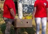 2017-08-22 HO SZM AKCIJA U VRANJAKU (3)