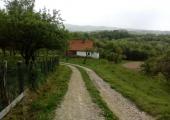 2019-05-10-HO-SZM-ANĐA-GLAVAŠ-9